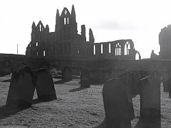 Whitby Abbey graveyard
