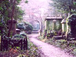 A Path through Highgate Cemetery