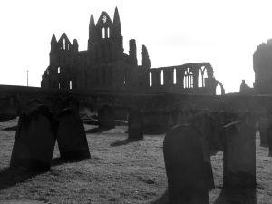 abbey grey