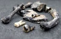 Bones found in St Andrews Church, Newcastle - are they witches bones?