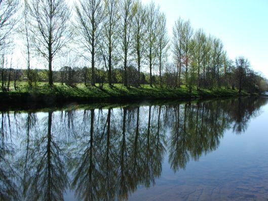 River Tweed, Border Abbey's Way, April 2009