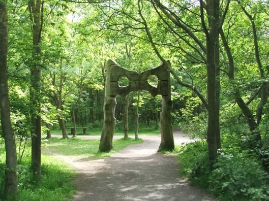 The Hares hip bones, Rising Sun Nature Park, Summer 2013