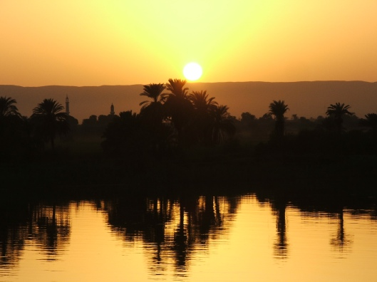 Nile Trees, Egypt 2009