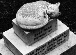 Cat tombstone