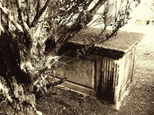 Overgrown tomb by Lenora