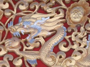 Dragon details