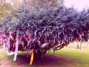 East meets West:  Tibetan prayer flags and Celtic clooties/rag offerings.