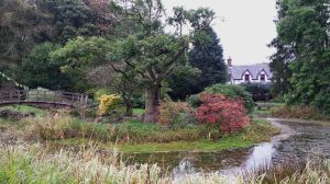 Scottish garden