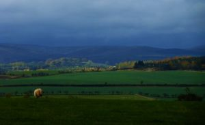 View of the Cheviots from Chillingham Castle. Image by Lenora.