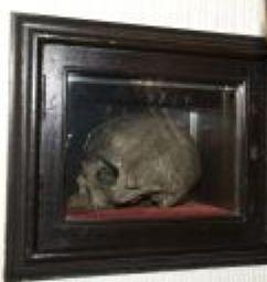 Skull of St Ambrose