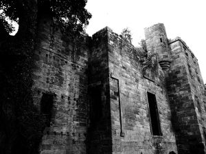 The tall tower at Dilston Castle.