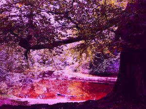 20161002_devil-water-red_1