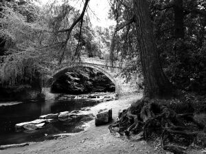 Lords Bridge, over the Devil Water at Dilston.